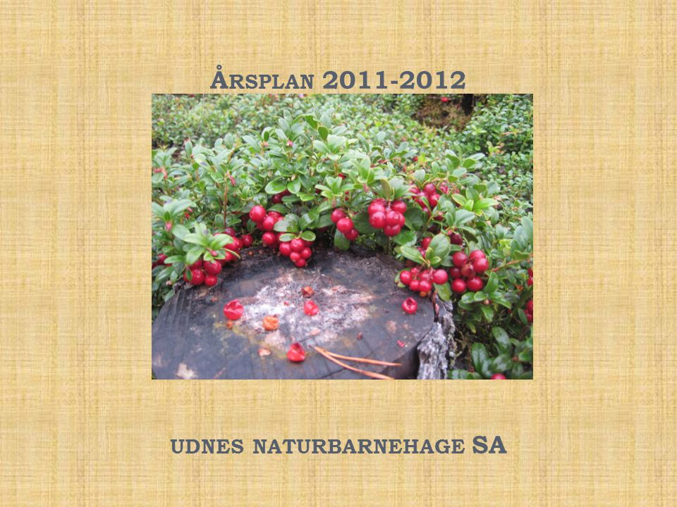 Årsplan 2011-2012 udnes naturbarnehage SA