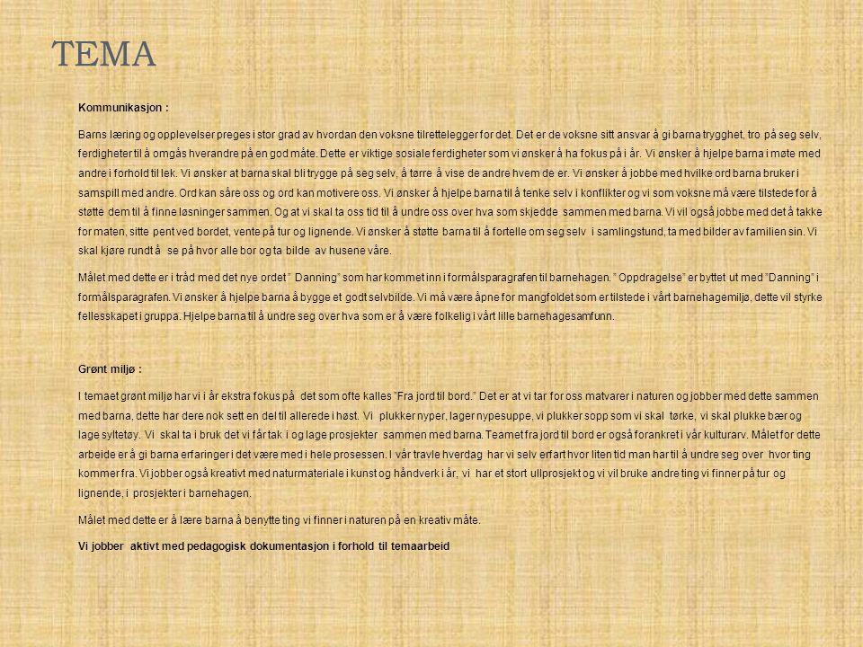 TEMA Kommunikasjon :