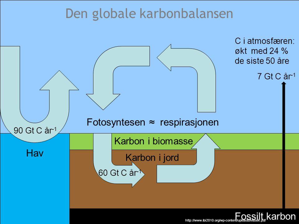 Den globale karbonbalansen
