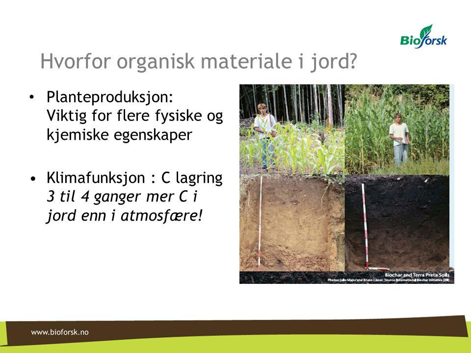 Hvorfor organisk materiale i jord