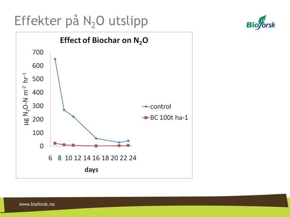 Effekter på N2O utslipp