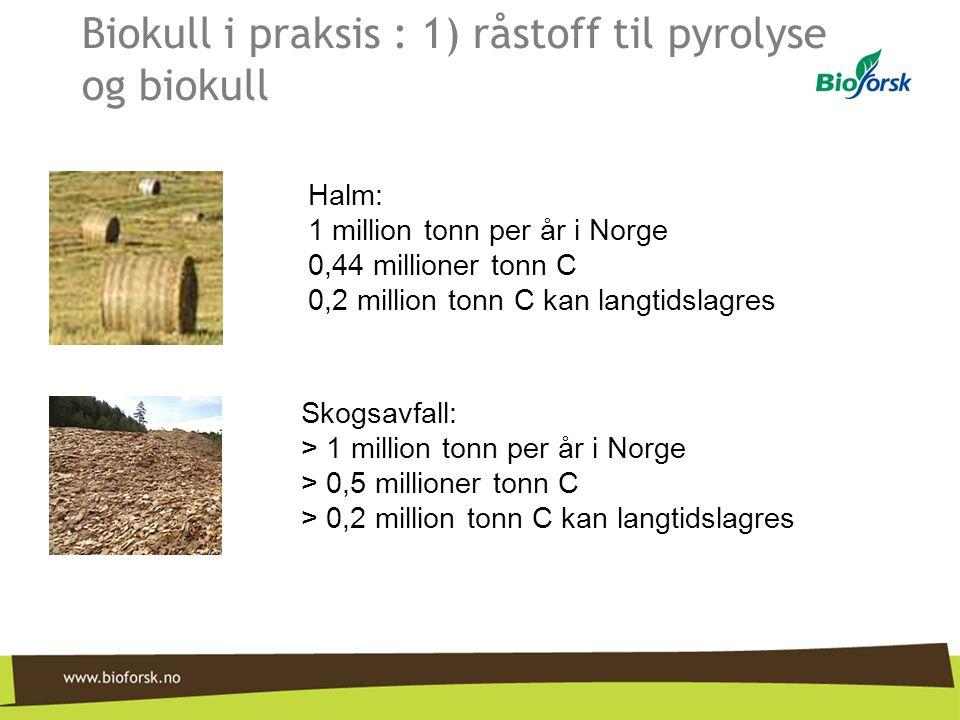 Biokull i praksis : 1) råstoff til pyrolyse og biokull