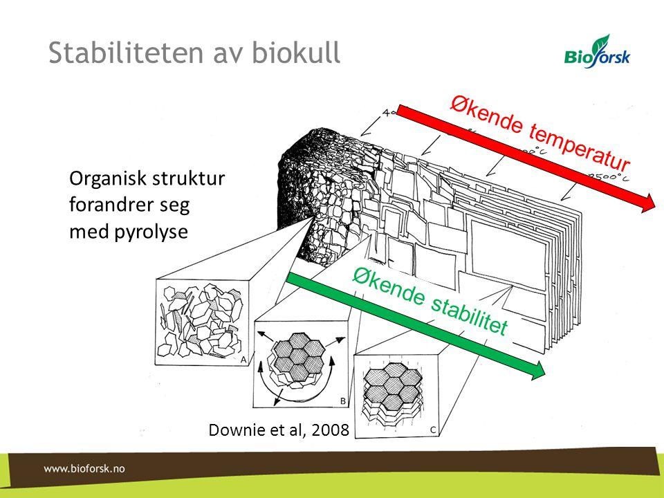 Stabiliteten av biokull