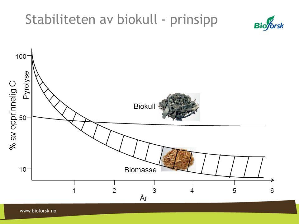 Stabiliteten av biokull - prinsipp