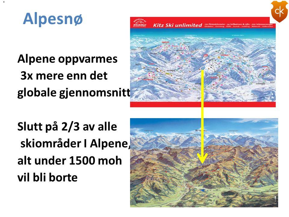 . . Alpesnø.