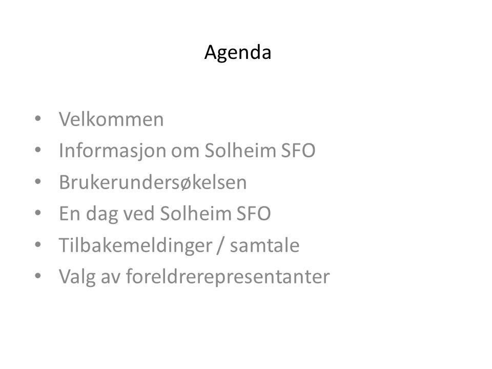Agenda Velkommen. Informasjon om Solheim SFO. Brukerundersøkelsen. En dag ved Solheim SFO. Tilbakemeldinger / samtale.