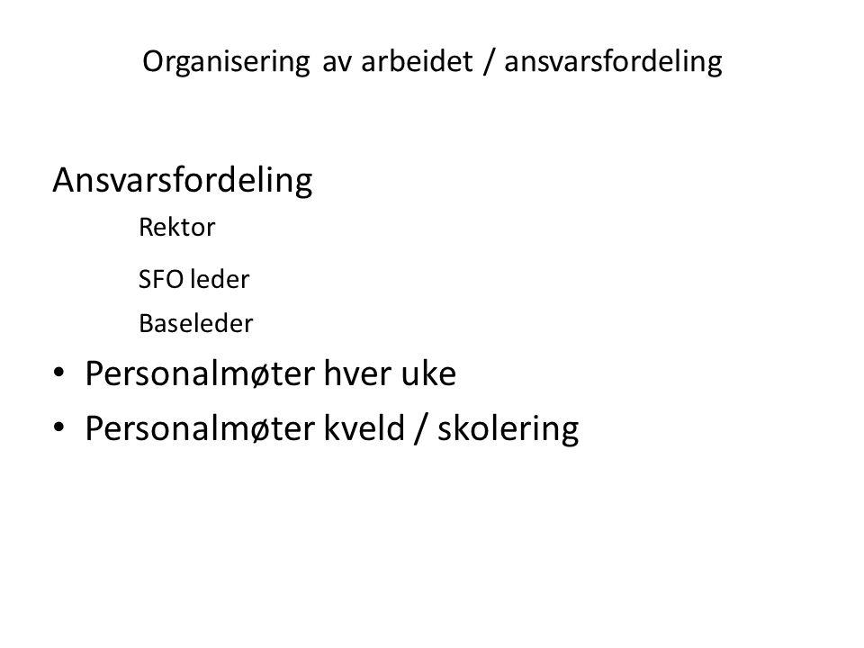 Organisering av arbeidet / ansvarsfordeling