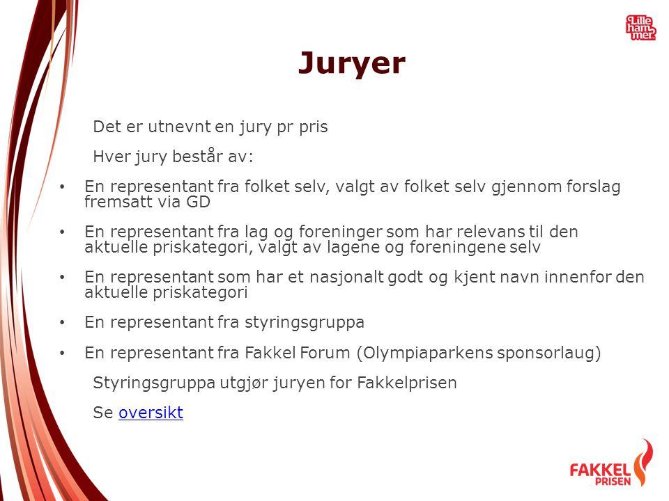 Juryer Det er utnevnt en jury pr pris Hver jury består av: