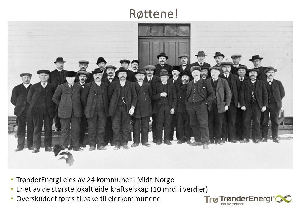 Røttene! TrønderEnergi eies av 24 kommuner i Midt-Norge