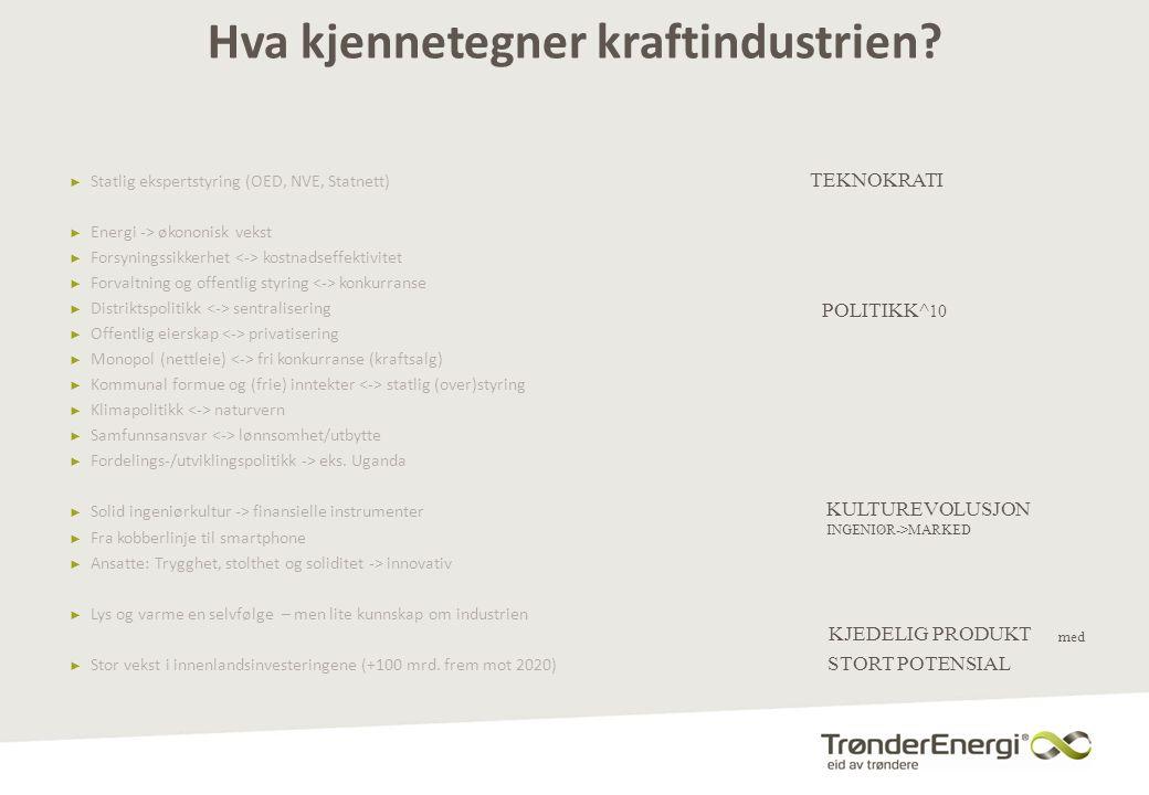 Hva kjennetegner kraftindustrien