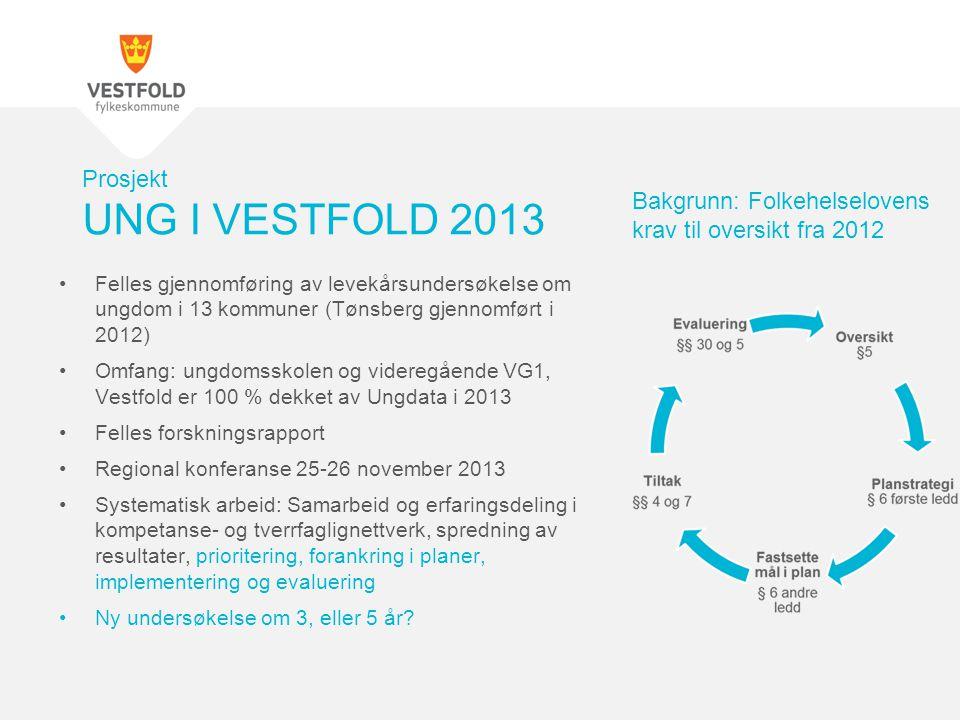 Prosjekt UNG I VESTFOLD 2013