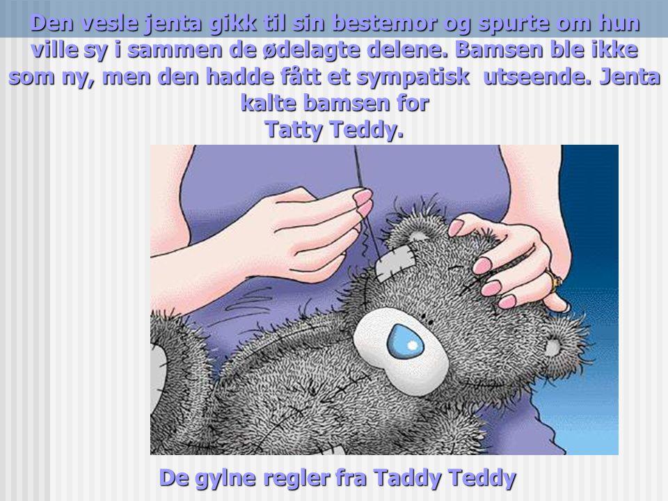 De gylne regler fra Taddy Teddy