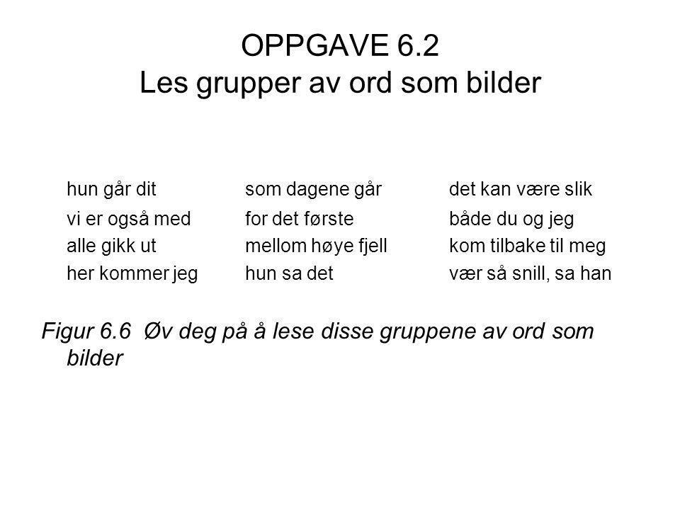 OPPGAVE 6.2 Les grupper av ord som bilder