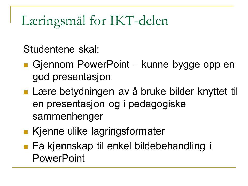 Læringsmål for IKT-delen