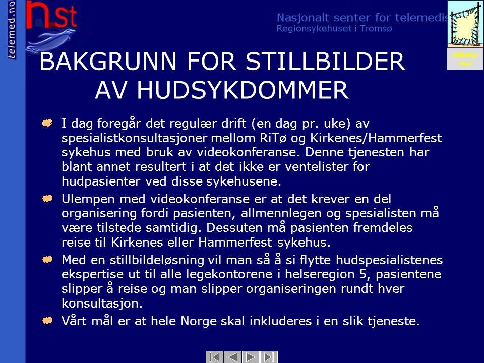BAKGRUNN FOR STILLBILDER AV HUDSYKDOMMER
