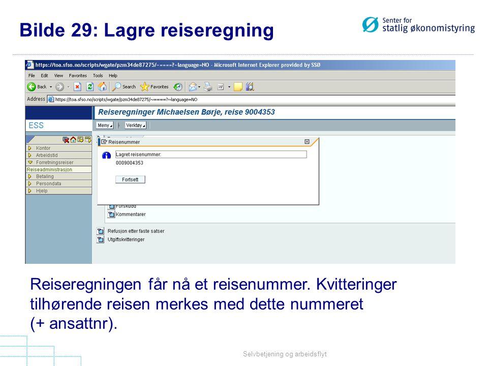 Bilde 29: Lagre reiseregning