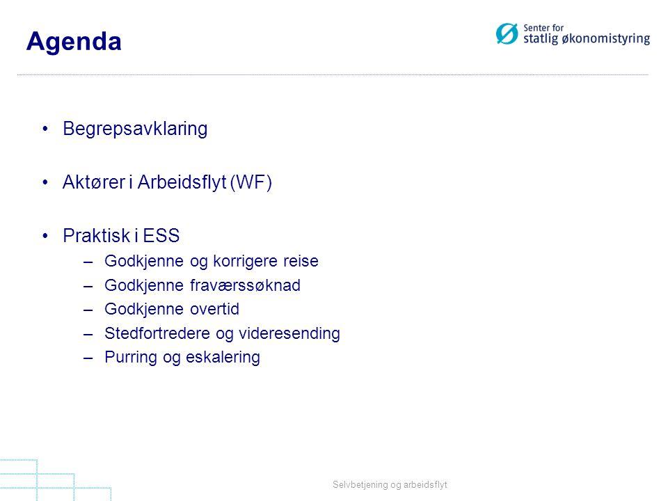 Agenda Begrepsavklaring Aktører i Arbeidsflyt (WF) Praktisk i ESS