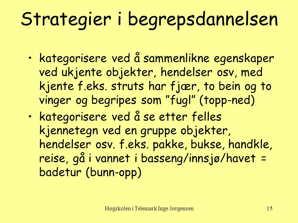 Strategier i begrepsdannelsen