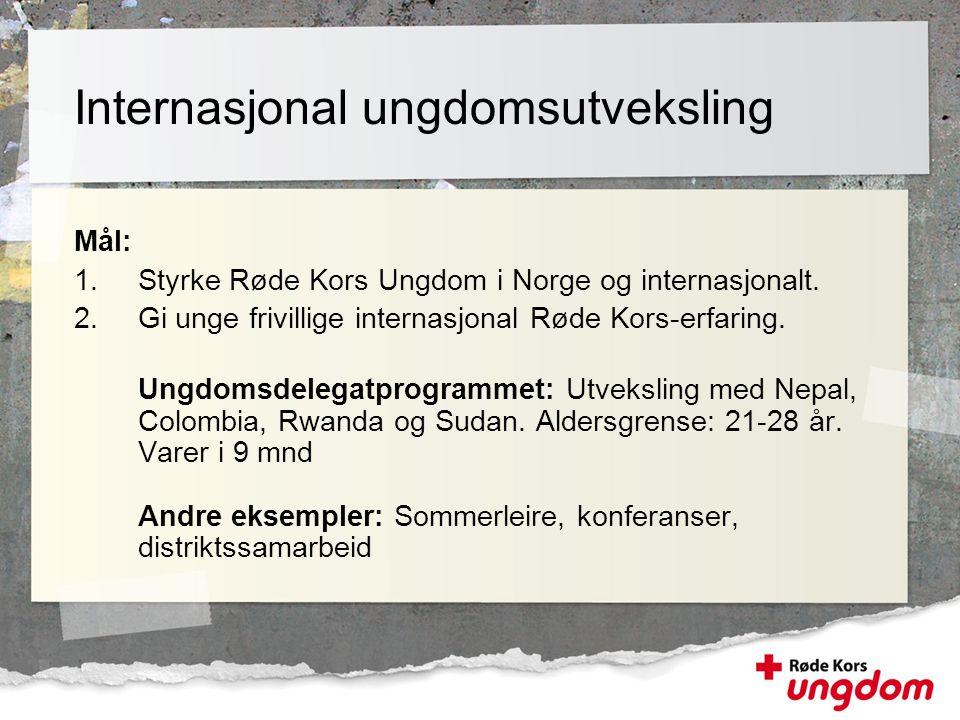 Internasjonal ungdomsutveksling