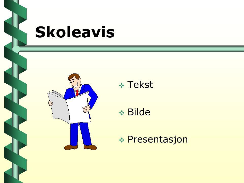 Skoleavis Tekst Bilde Presentasjon 22