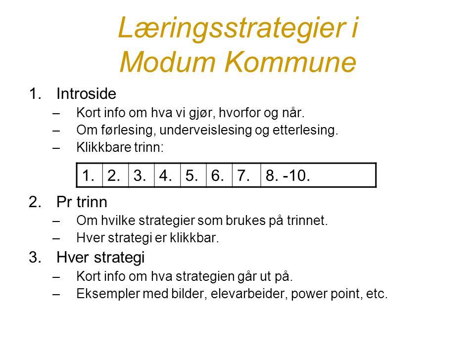 Læringsstrategier i Modum Kommune