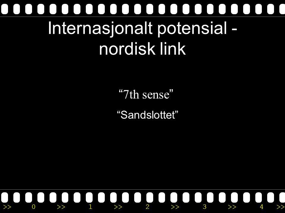 Internasjonalt potensial -nordisk link