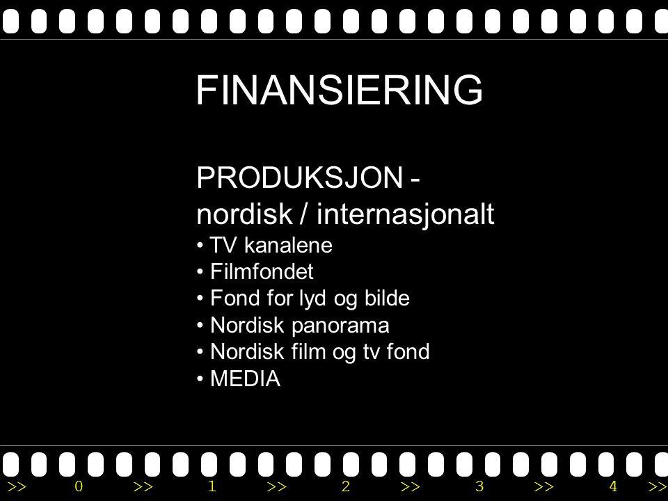 FINANSIERING PRODUKSJON - nordisk / internasjonalt TV kanalene