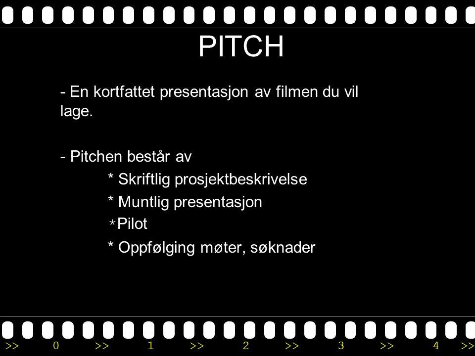 PITCH - En kortfattet presentasjon av filmen du vil lage.