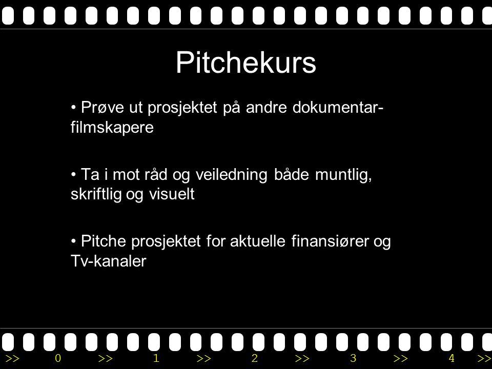 Pitchekurs • Prøve ut prosjektet på andre dokumentar- filmskapere