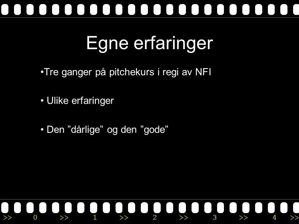 Egne erfaringer Tre ganger på pitchekurs i regi av NFI