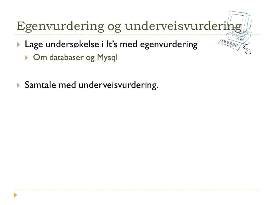 Egenvurdering og underveisvurdering
