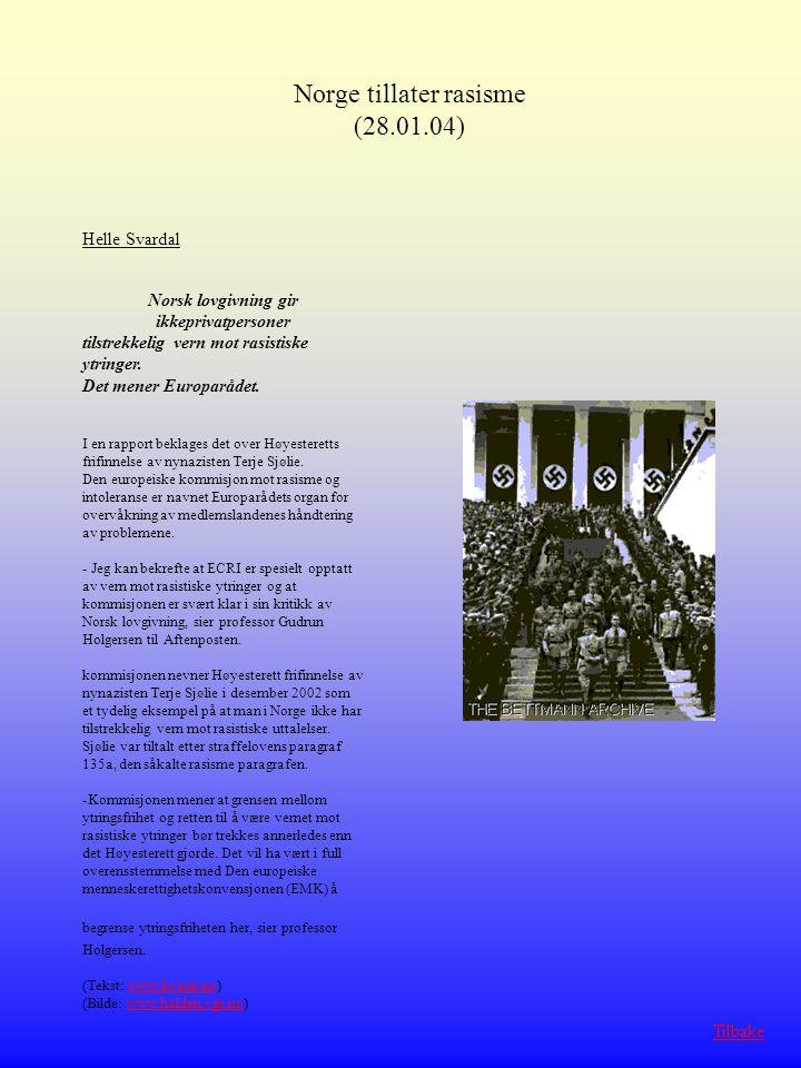 Norsk lovgivning gir ikkeprivatpersoner