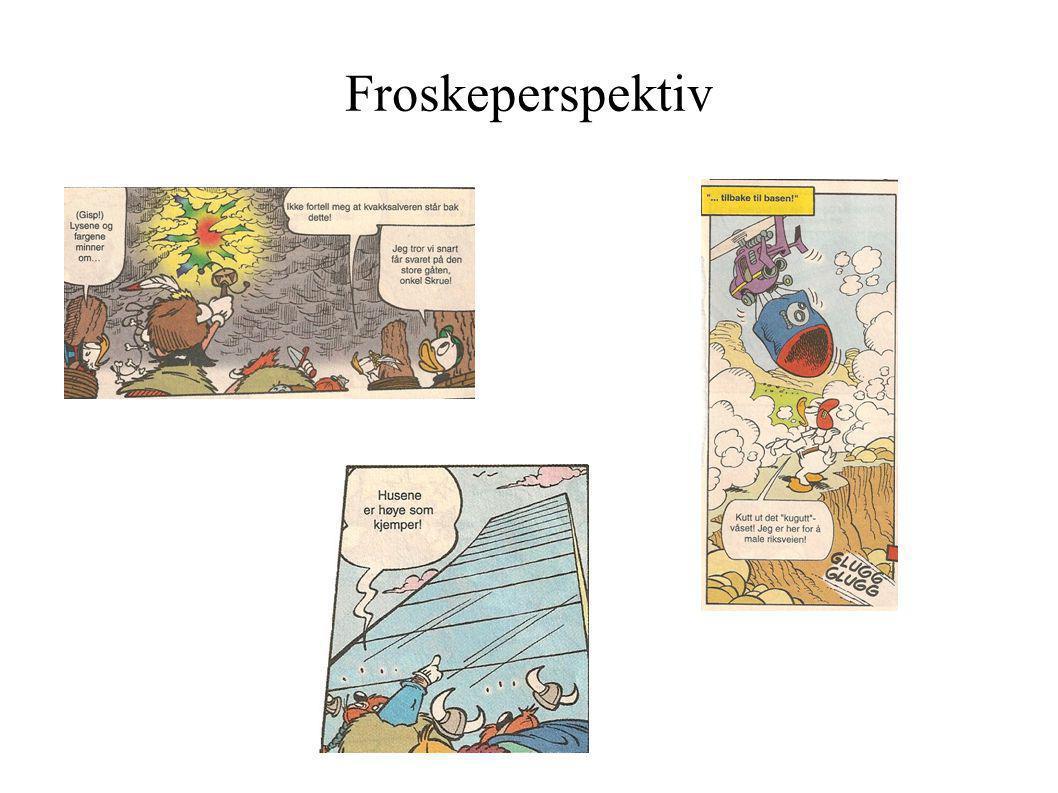 Froskeperspektiv 7