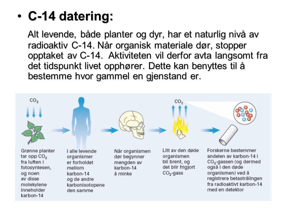 C-14 datering:
