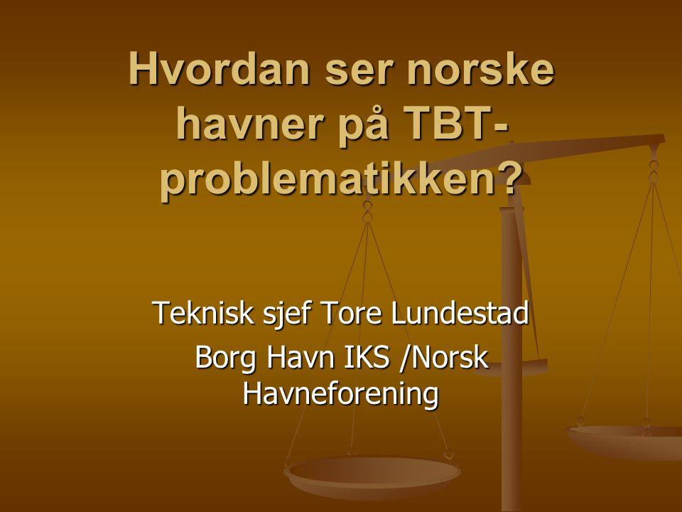 Hvordan ser norske havner på TBT- problematikken