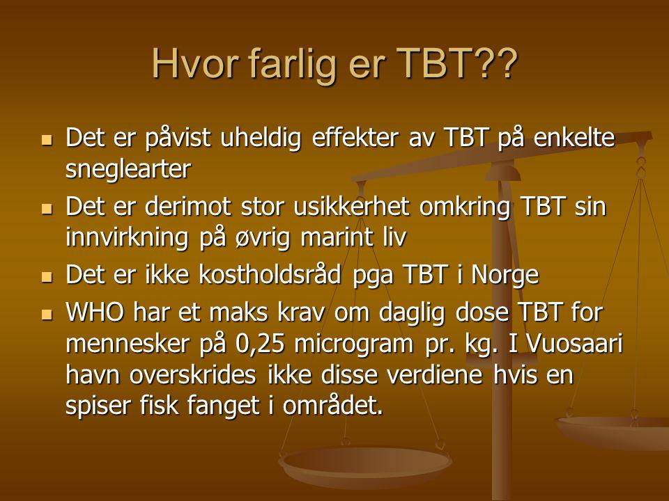 Hvor farlig er TBT Det er påvist uheldig effekter av TBT på enkelte sneglearter.