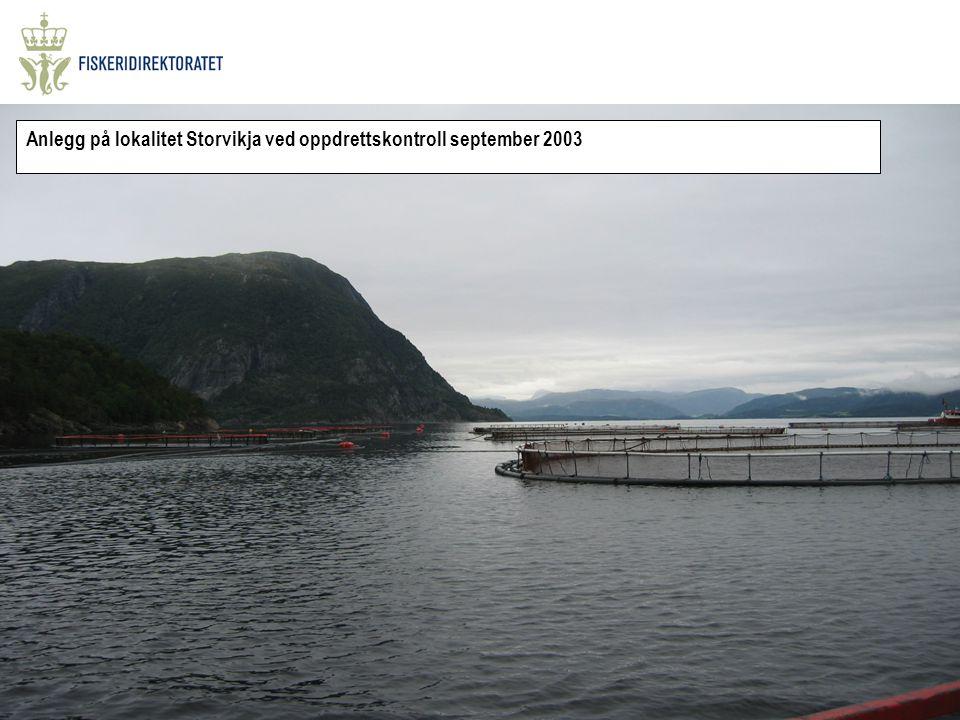 Anlegg på lokalitet Storvikja ved oppdrettskontroll september 2003