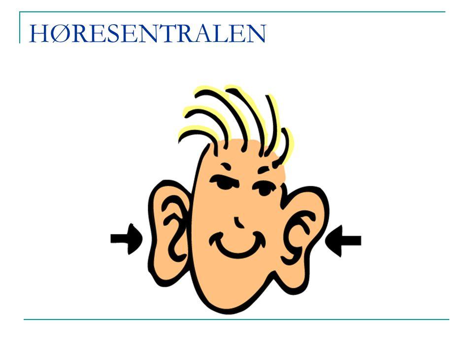 Prosjekter dr.med. Ståle Nordgård: