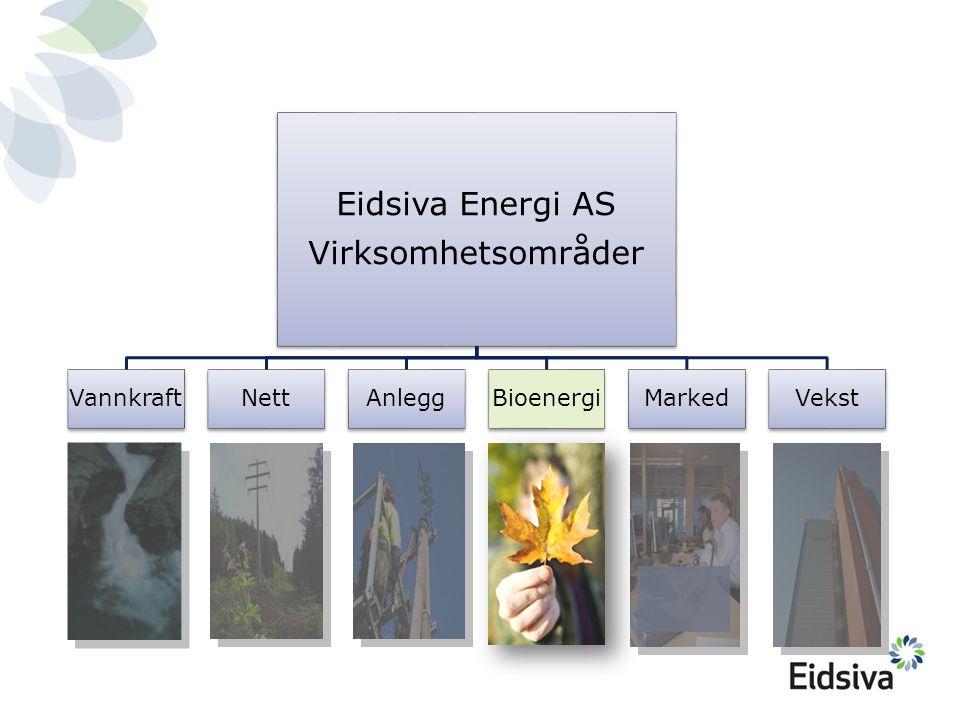 Eidsiva Energi AS Virksomhetsområder Vannkraft Nett Anlegg Bioenergi