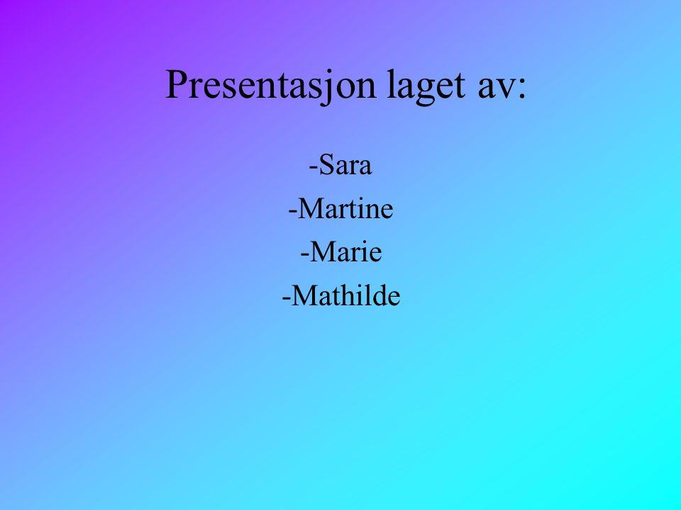 Presentasjon laget av: