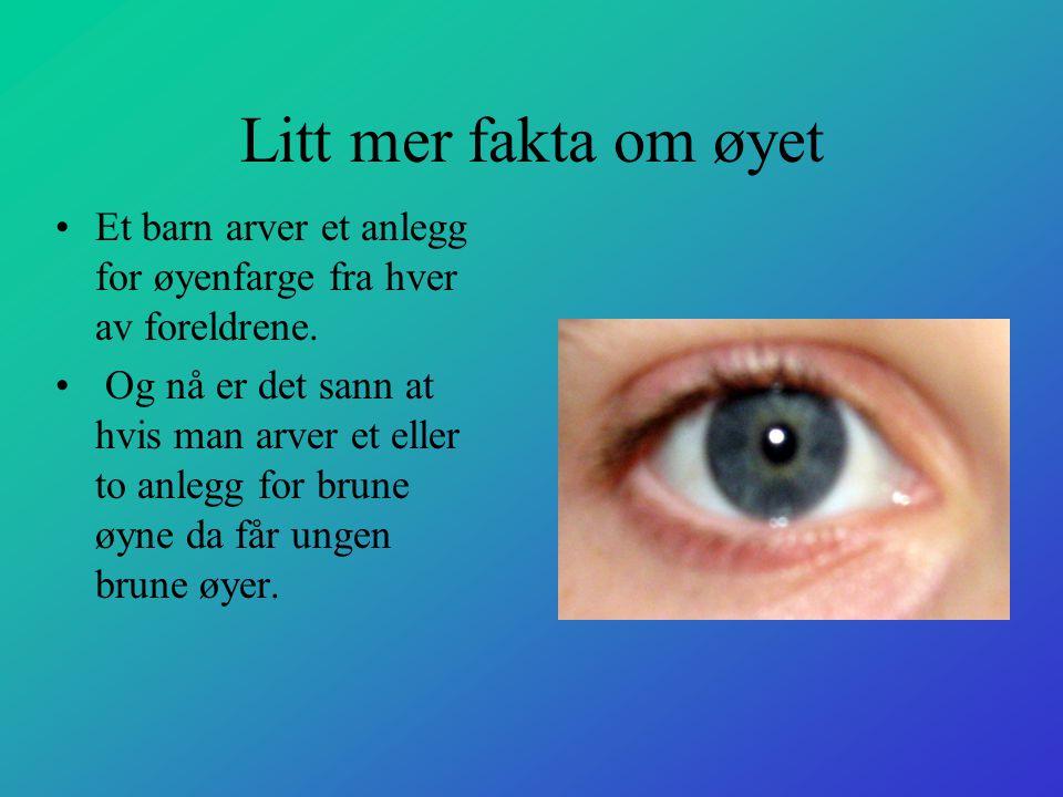 Litt mer fakta om øyet Et barn arver et anlegg for øyenfarge fra hver av foreldrene.
