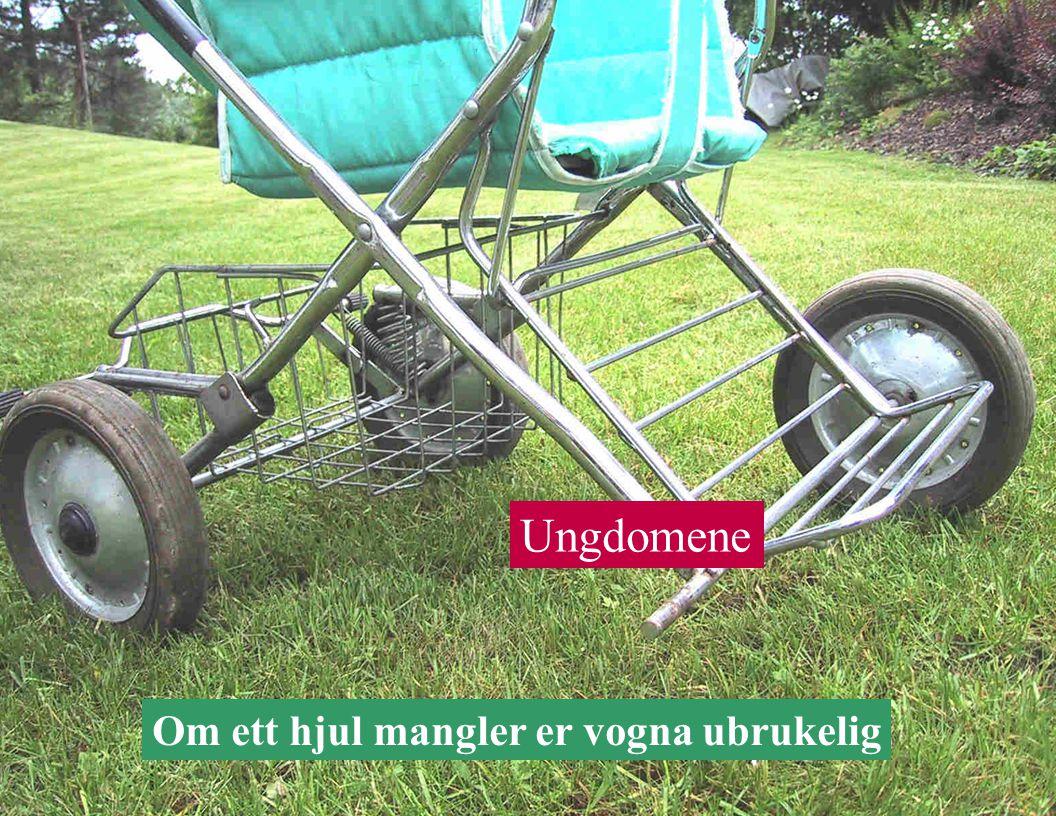 Ungdomene Om ett hjul mangler er vogna ubrukelig