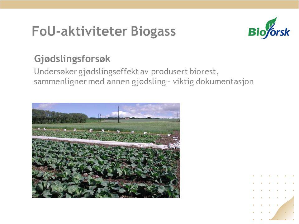 FoU-aktiviteter Biogass