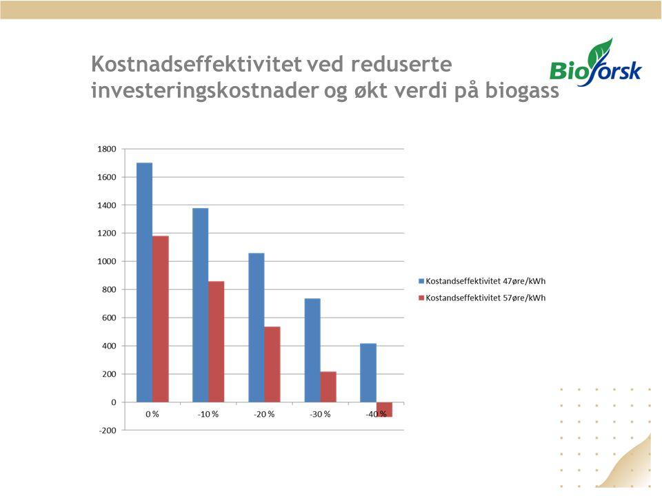 Kostnadseffektivitet ved reduserte investeringskostnader og økt verdi på biogass