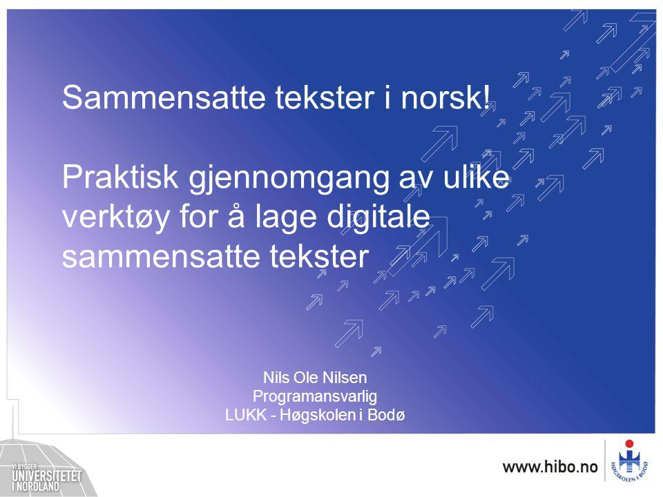 Nils Ole Nilsen Programansvarlig LUKK - Høgskolen i Bodø