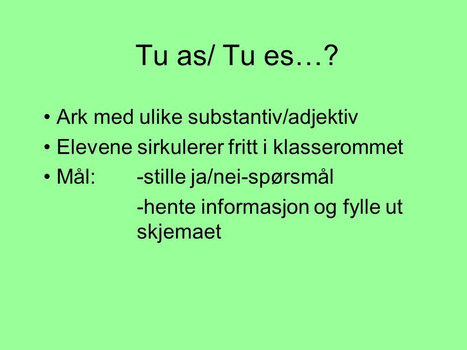 Tu as/ Tu es… Ark med ulike substantiv/adjektiv