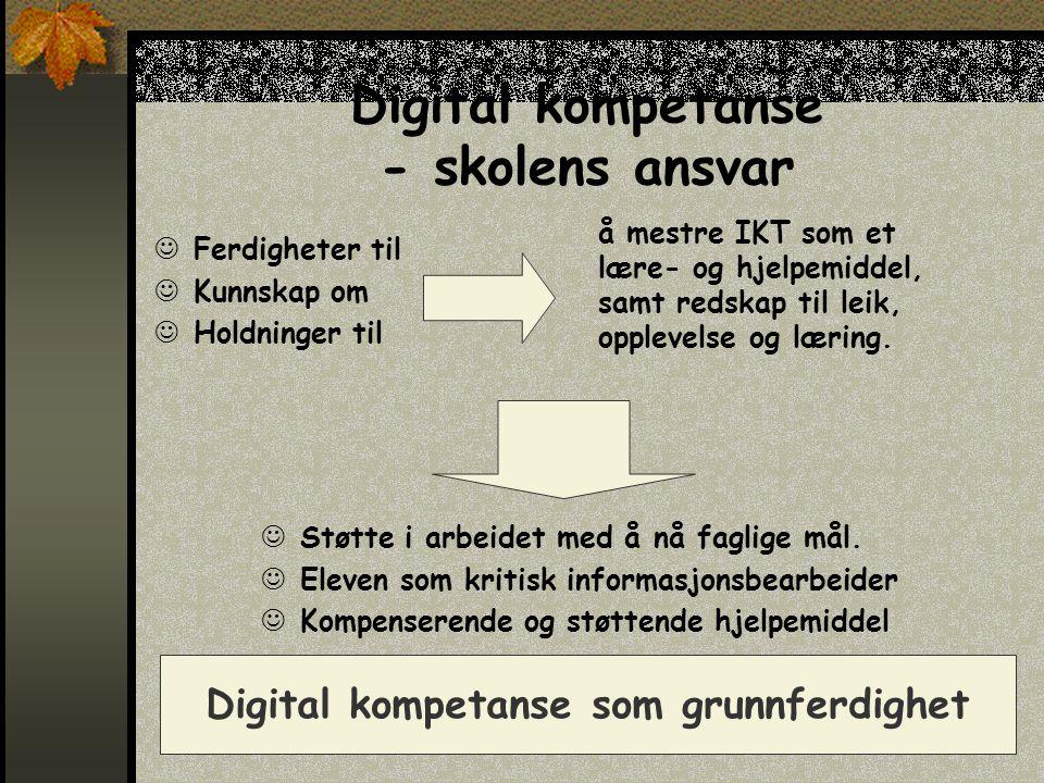 Digital kompetanse - skolens ansvar