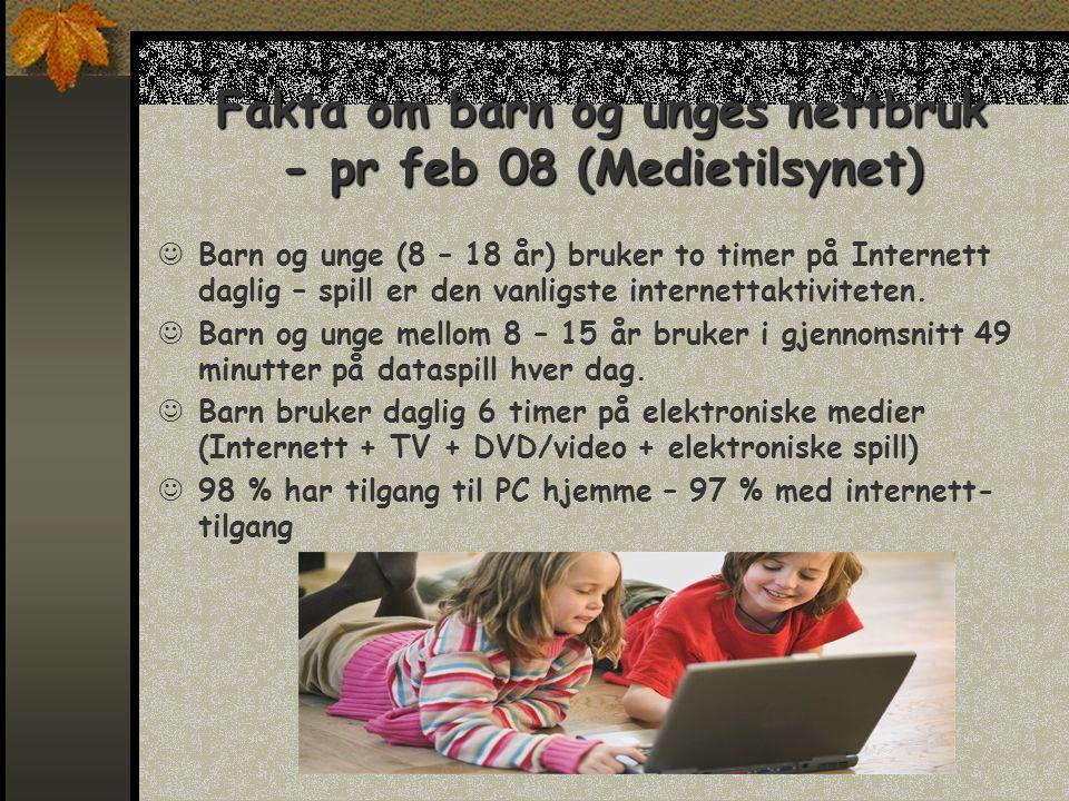 Fakta om barn og unges nettbruk - pr feb 08 (Medietilsynet)