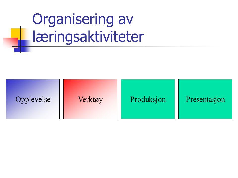 Organisering av læringsaktiviteter