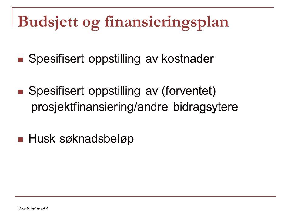Budsjett og finansieringsplan